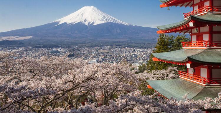 2021年你不容错过的亚马逊市场——日本站